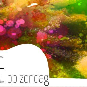 Dagblad van het Noorden: Stadjer betaalt concertreeks in Poortershoes uit eigen zak